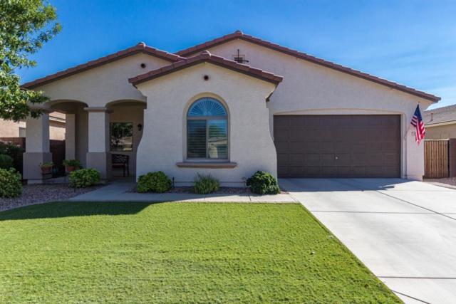 687 W Dragon Tree Avenue, San Tan Valley, AZ 85140 (MLS #5828965) :: The Garcia Group