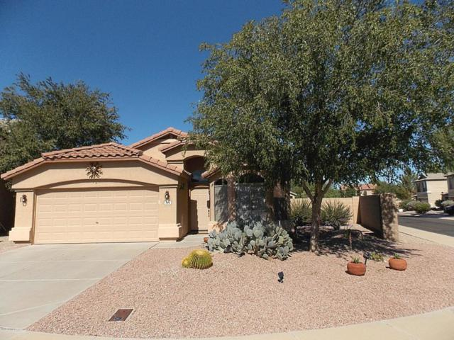794 E Compass Court, San Tan Valley, AZ 85143 (MLS #5829018) :: Yost Realty Group at RE/MAX Casa Grande