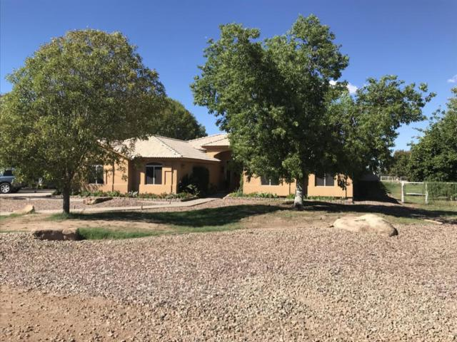26205 S Grapefruit Drive, Queen Creek, AZ 85142 (MLS #5829138) :: Santizo Realty Group