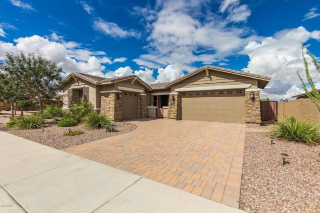 22096 E Rosa Road, Queen Creek, AZ 85142 (MLS #5829153) :: The Garcia Group @ My Home Group