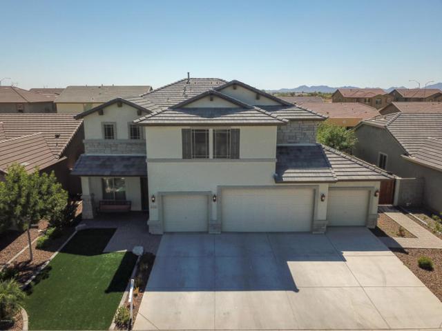 11513 E Sable Avenue, Mesa, AZ 85212 (MLS #5829226) :: The Daniel Montez Real Estate Group