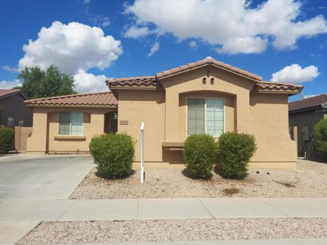 17600 W Buchanan Street, Goodyear, AZ 85338 (MLS #5829337) :: Five Doors Network