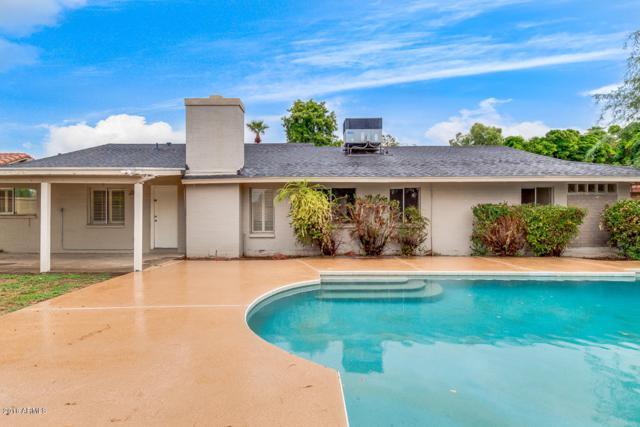 8440 N 18TH Avenue, Phoenix, AZ 85021 (MLS #5829442) :: Yost Realty Group at RE/MAX Casa Grande