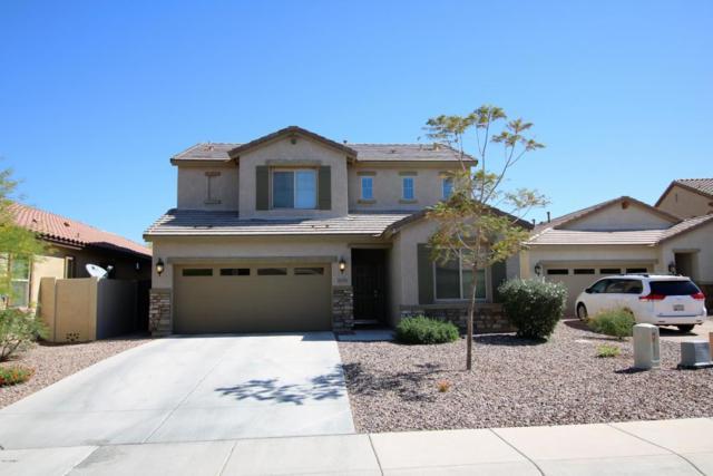 28335 N Cactus Flower Circle, San Tan Valley, AZ 85143 (MLS #5829503) :: Yost Realty Group at RE/MAX Casa Grande