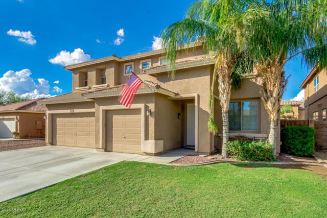 7842 W Andrea Drive, Peoria, AZ 85383 (MLS #5829511) :: The Laughton Team