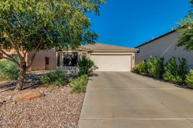 35478 N Barzona Trail, San Tan Valley, AZ 85143 (MLS #5829512) :: Yost Realty Group at RE/MAX Casa Grande