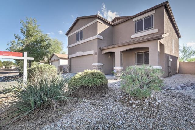 1813 E Desert Rose Trail, San Tan Valley, AZ 85143 (MLS #5829600) :: Yost Realty Group at RE/MAX Casa Grande