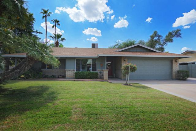 1823 W Orchid Lane, Phoenix, AZ 85021 (MLS #5829745) :: Yost Realty Group at RE/MAX Casa Grande