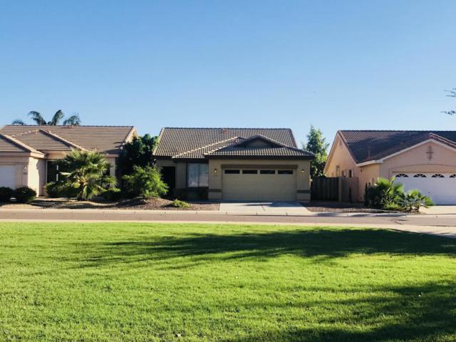 7053 W Tonopah Drive, Glendale, AZ 85308 (MLS #5829817) :: Lifestyle Partners Team