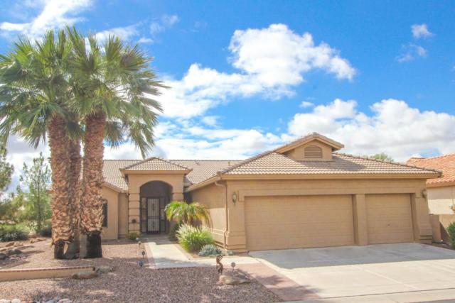 9841 E Emerald Drive, Sun Lakes, AZ 85248 (MLS #5829861) :: The Garcia Group @ My Home Group