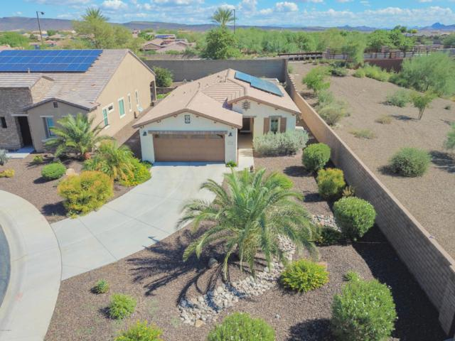 29051 N 129TH Lane, Peoria, AZ 85383 (MLS #5829989) :: Desert Home Premier