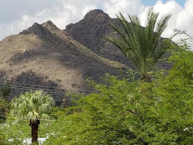 7117 E Rancho Vista Drive #3003, Scottsdale, AZ 85251 (MLS #5830019) :: The Laughton Team