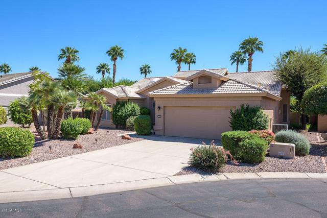 3700 N 156TH Lane, Goodyear, AZ 85395 (MLS #5830147) :: Desert Home Premier