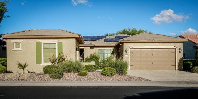 20283 N 273RD Avenue, Buckeye, AZ 85396 (MLS #5830167) :: Desert Home Premier