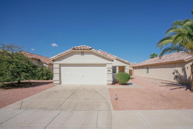 12224 W Dahlia Drive, El Mirage, AZ 85335 (MLS #5830208) :: Lux Home Group at  Keller Williams Realty Phoenix