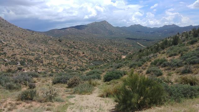 Lot 129 Pack Mule Road, Wikieup, AZ 85360 (MLS #5830275) :: Devor Real Estate Associates