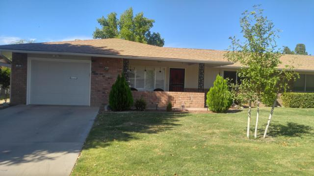 9516 W Sandstone Drive, Sun City, AZ 85351 (MLS #5830321) :: Riddle Realty