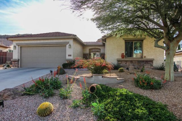 32120 N Larkspur Drive, San Tan Valley, AZ 85143 (MLS #5830333) :: The W Group