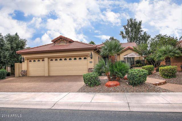 16247 W Indianola Avenue, Goodyear, AZ 85395 (MLS #5830385) :: Desert Home Premier