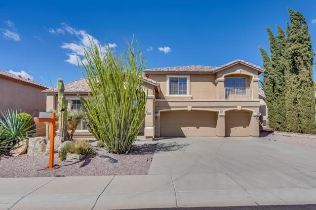 25204 N 73RD Lane, Peoria, AZ 85383 (MLS #5830394) :: The Results Group