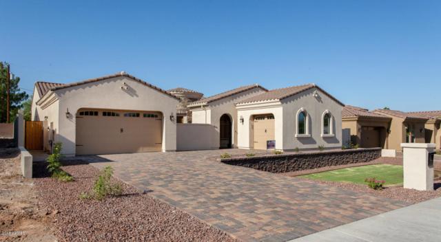 1815 E Palmaire Avenue, Phoenix, AZ 85020 (MLS #5830446) :: CC & Co. Real Estate Team