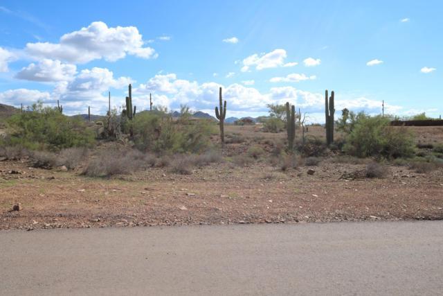 38841 N 16TH Street, Phoenix, AZ 85086 (MLS #5830449) :: Brett Tanner Home Selling Team