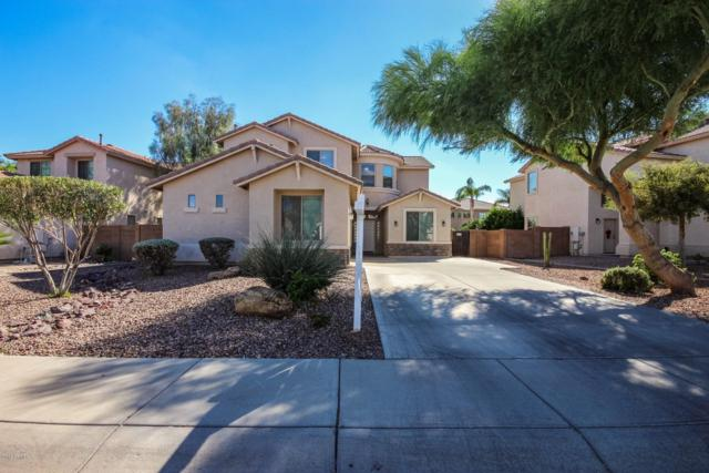 14975 W Riviera Drive, Surprise, AZ 85379 (MLS #5830477) :: The AZ Performance Realty Team