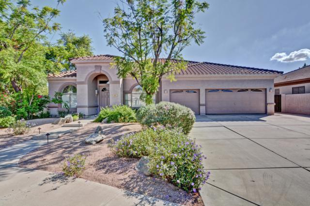 1561 E Appaloosa Court, Gilbert, AZ 85296 (MLS #5830646) :: Kepple Real Estate Group