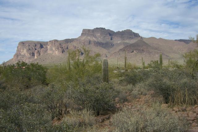 7087 E Grand View Lane, Apache Junction, AZ 85119 (MLS #5830671) :: Riddle Realty