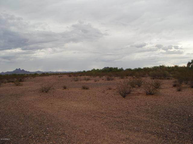 31998 W Radford Road, Unincorporated County, AZ 85361 (MLS #5830691) :: Lifestyle Partners Team