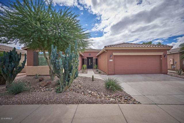 42947 W Magic Moment Drive, Maricopa, AZ 85138 (MLS #5830751) :: Lifestyle Partners Team