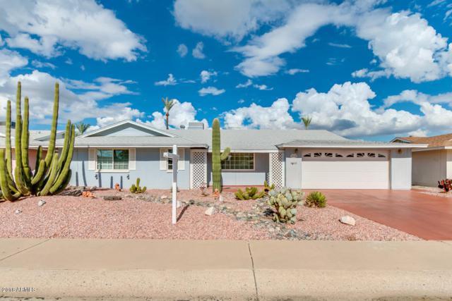 10144 W Pinehurst Drive, Sun City, AZ 85351 (MLS #5830820) :: The Laughton Team