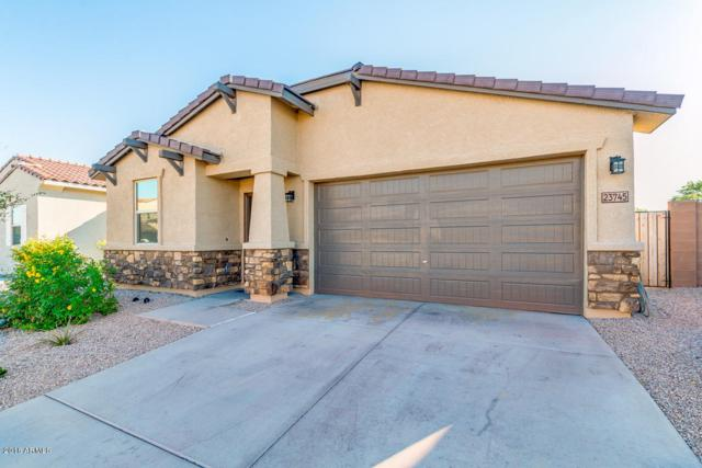 23745 W Watkins Street, Buckeye, AZ 85326 (MLS #5830864) :: The Results Group