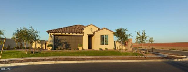 12597 N 144TH Avenue, Surprise, AZ 85379 (MLS #5830872) :: Phoenix Property Group
