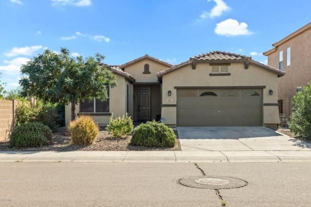 33467 N North Butte Drive, Queen Creek, AZ 85142 (MLS #5830897) :: Lifestyle Partners Team