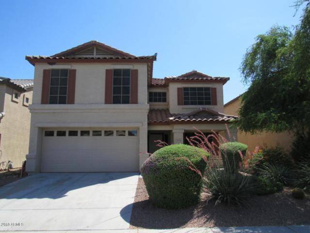 29134 N Rosewood Drive, San Tan Valley, AZ 85143 (MLS #5830951) :: Yost Realty Group at RE/MAX Casa Grande