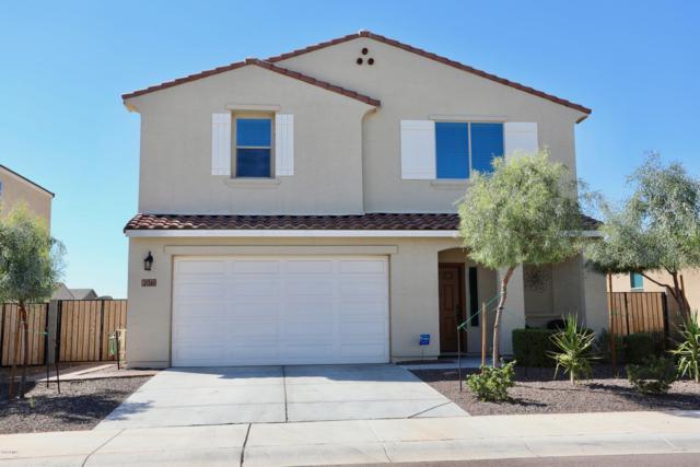 21361 W Holly Street, Buckeye, AZ 85396 (MLS #5830985) :: The Garcia Group @ My Home Group
