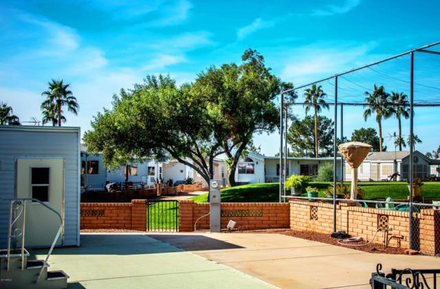 2193 S Klamath Avenue, Apache Junction, AZ 85120 (MLS #5831007) :: The Garcia Group