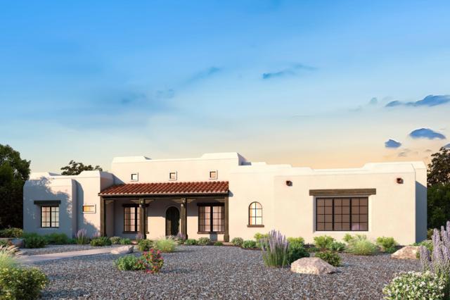 0(X) W Wahissa Trail, Queen Creek, AZ 85142 (MLS #5831010) :: Yost Realty Group at RE/MAX Casa Grande