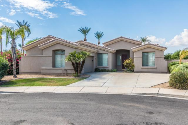 3204 N 146TH Avenue, Goodyear, AZ 85395 (MLS #5831020) :: The AZ Performance Realty Team