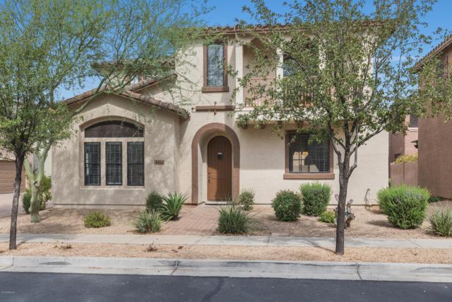 2416 W Dusty Wren Drive, Phoenix, AZ 85085 (MLS #5831100) :: The Garcia Group