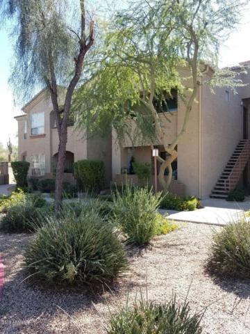 29606 N Tatum Boulevard #246, Cave Creek, AZ 85331 (MLS #5831102) :: Arizona Best Real Estate