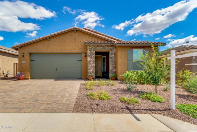 30911 N 25TH Drive, Phoenix, AZ 85085 (MLS #5831279) :: Lux Home Group at  Keller Williams Realty Phoenix