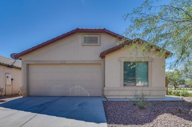 40509 W Hayden Drive, Maricopa, AZ 85138 (MLS #5831287) :: Yost Realty Group at RE/MAX Casa Grande