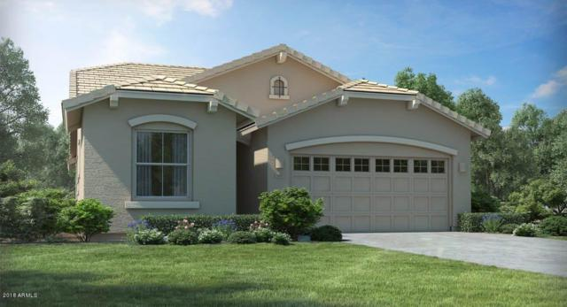 28848 N 40TH Place, Cave Creek, AZ 85331 (MLS #5831317) :: Arizona Best Real Estate