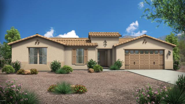 18146 W Cassia Way, Goodyear, AZ 85338 (MLS #5831339) :: Kortright Group - West USA Realty