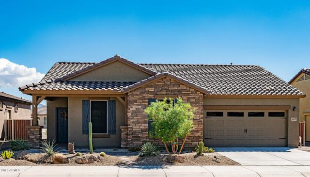 16879 S 180TH Avenue, Goodyear, AZ 85338 (MLS #5831360) :: The Laughton Team