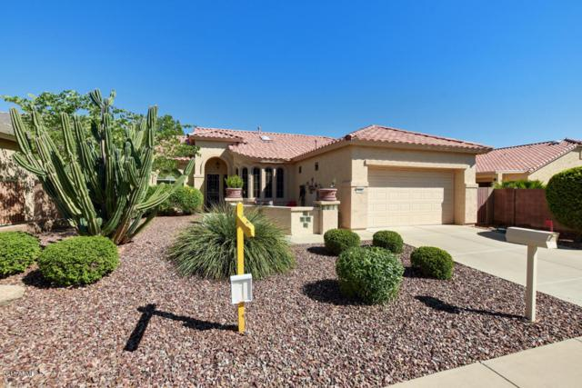 18022 W Hayden Drive, Surprise, AZ 85374 (MLS #5831365) :: Desert Home Premier
