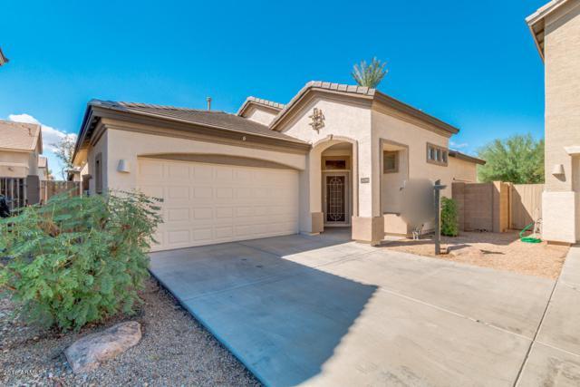 14288 W Cora Lane, Goodyear, AZ 85395 (MLS #5831460) :: The Garcia Group @ My Home Group