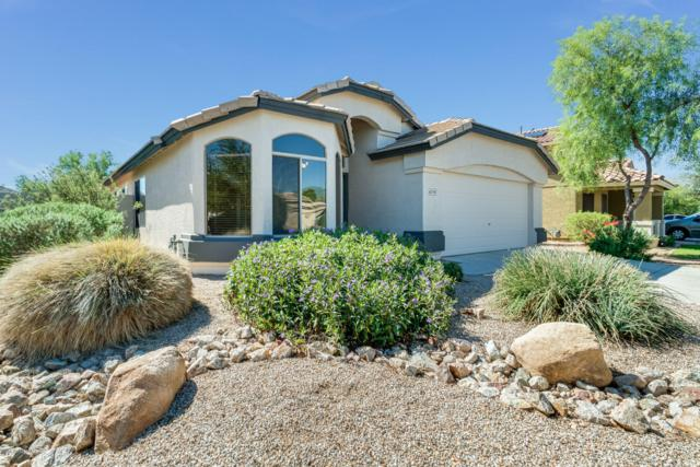 16779 W Fillmore Street, Goodyear, AZ 85338 (MLS #5831478) :: Five Doors Network